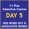 11 plus intensive course Day 5