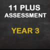 assessment year 3