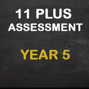 11 Plus Tuition Assessment Year 3 11 Plus Tuition Birmingham Centre Find more assessment ideas on the. 11 plus tuition assessment year 3